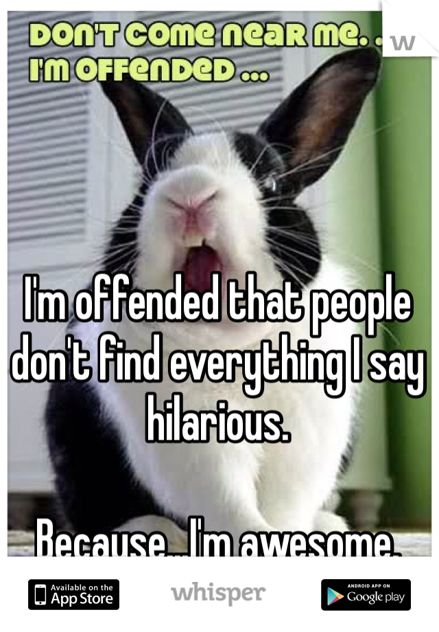 I'm offended that people don't find everything I say hilarious.   Because...I'm awesome.