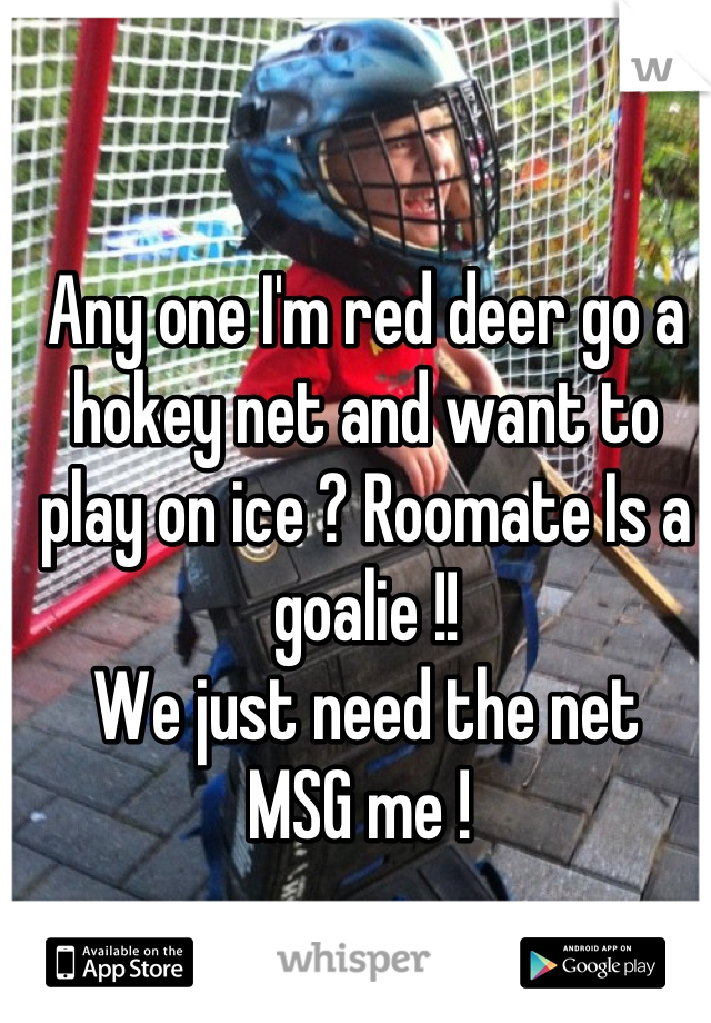 Any one I'm red deer go a hokey net and want to play on ice ? Roomate Is a goalie !!  We just need the net  MSG me !