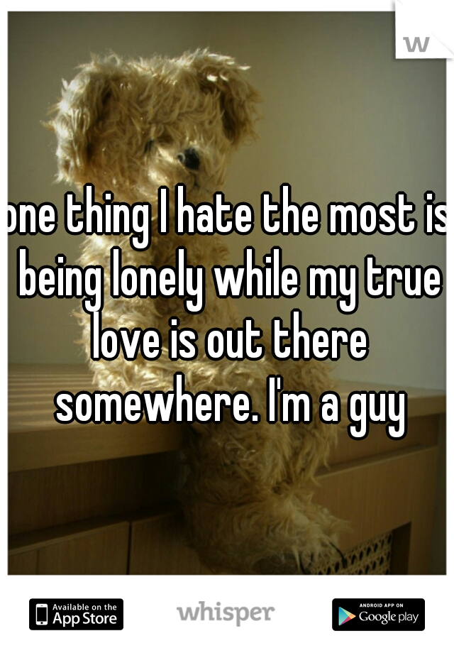 one thing I hate the most is being lonely while my true love is out there somewhere. I'm a guy