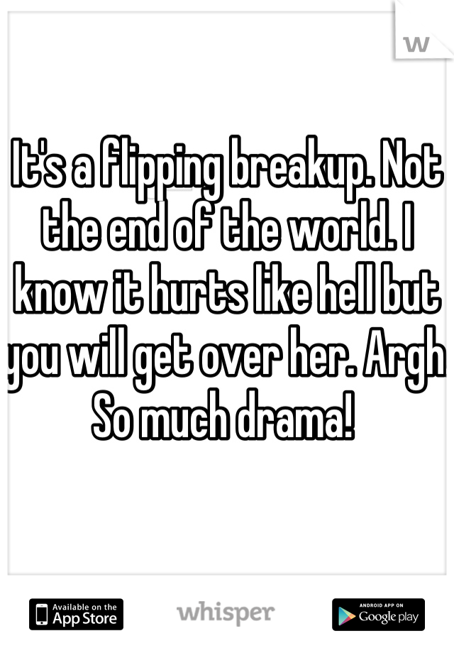 It's a flipping breakup. Not the end of the world. I know it hurts like hell but you will get over her. Argh. So much drama!