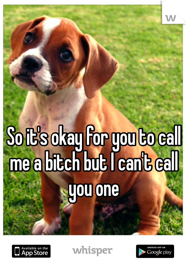 So it's okay for you to call me a bitch but I can't call you one