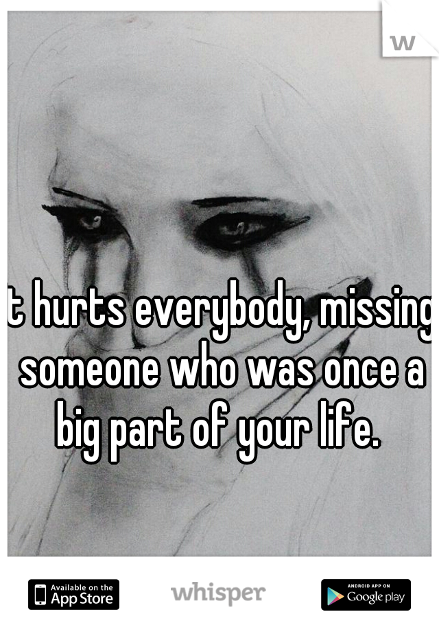It hurts everybody, missing someone who was once a big part of your life.