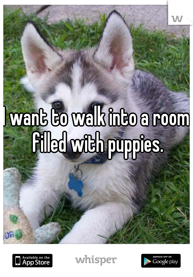 I want to walk into a room filled with puppies.