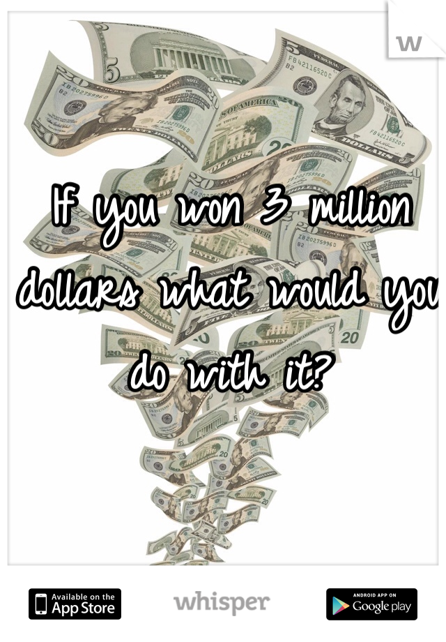 If you won 3 million dollars what would you do with it?