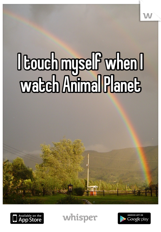 I touch myself when I watch Animal Planet