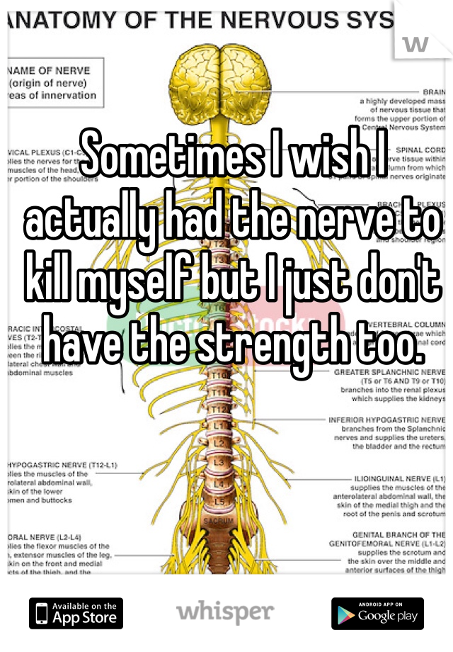Sometimes I wish I actually had the nerve to kill myself but I just don't have the strength too.