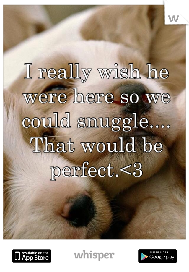 I really wish he were here so we could snuggle.... That would be perfect.<3