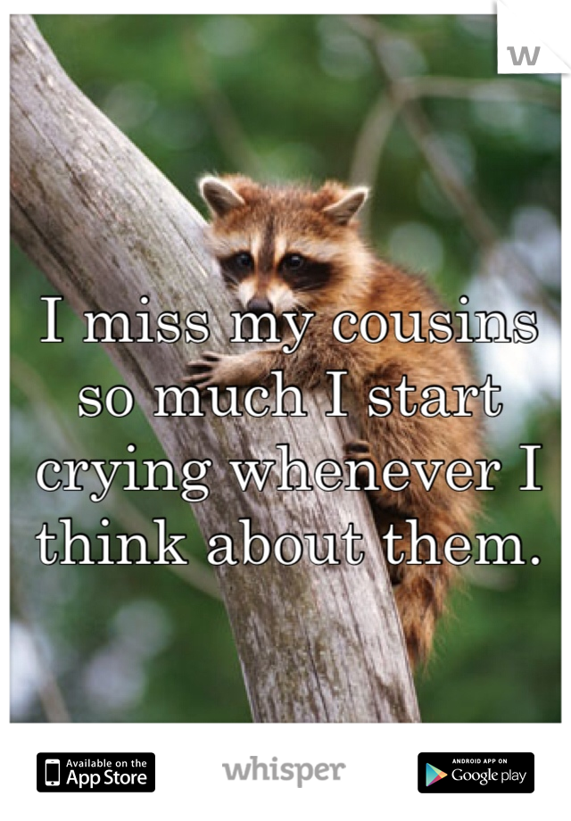I miss my cousins so much I start crying whenever I think about them.