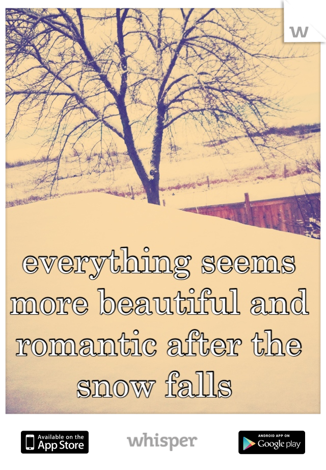 everything seems more beautiful and romantic after the snow falls