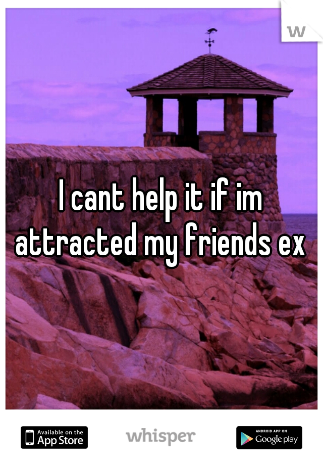 I cant help it if im attracted my friends ex