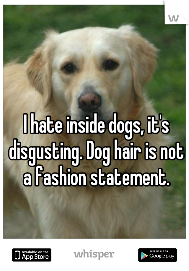I hate inside dogs, it's disgusting. Dog hair is not a fashion statement.