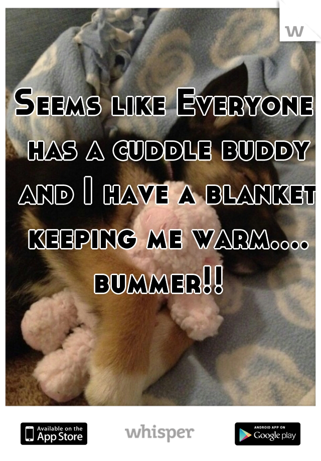 Seems like Everyone has a cuddle buddy and I have a blanket keeping me warm.... bummer!!
