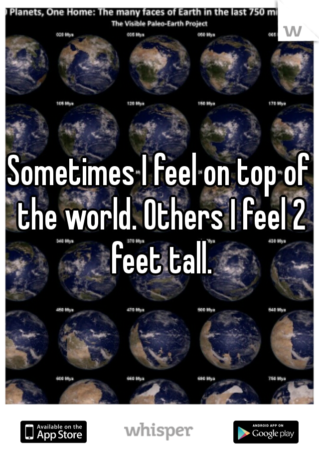Sometimes I feel on top of the world. Others I feel 2 feet tall.