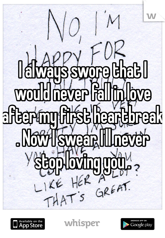 I always swore that I would never fall in love after my first heartbreak . Now I swear I'll never stop loving you .