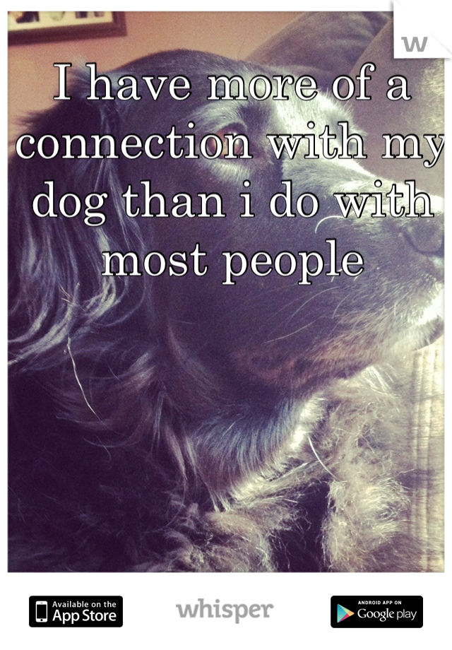 I have more of a connection with my dog than i do with most people