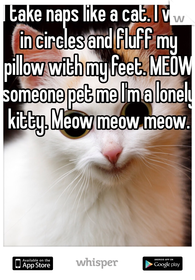 I take naps like a cat. I walk in circles and fluff my pillow with my feet. MEOW someone pet me I'm a lonely kitty. Meow meow meow.