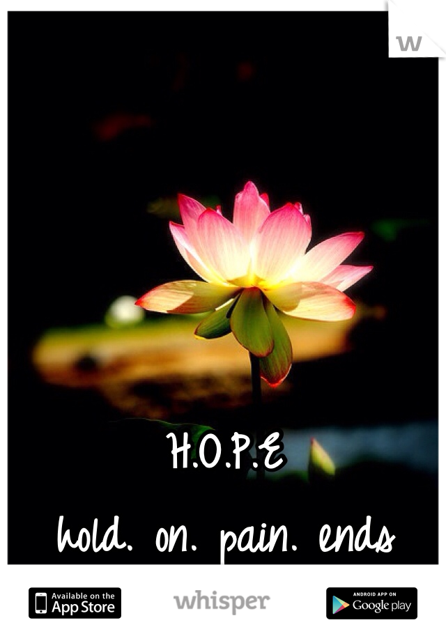 H.O.P.E hold. on. pain. ends