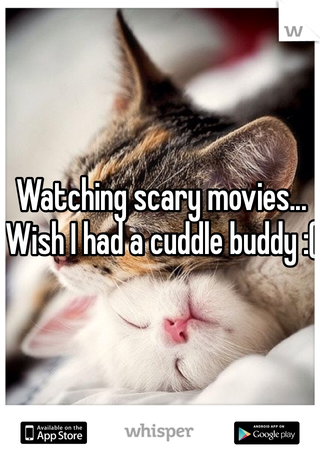 Watching scary movies... Wish I had a cuddle buddy :(