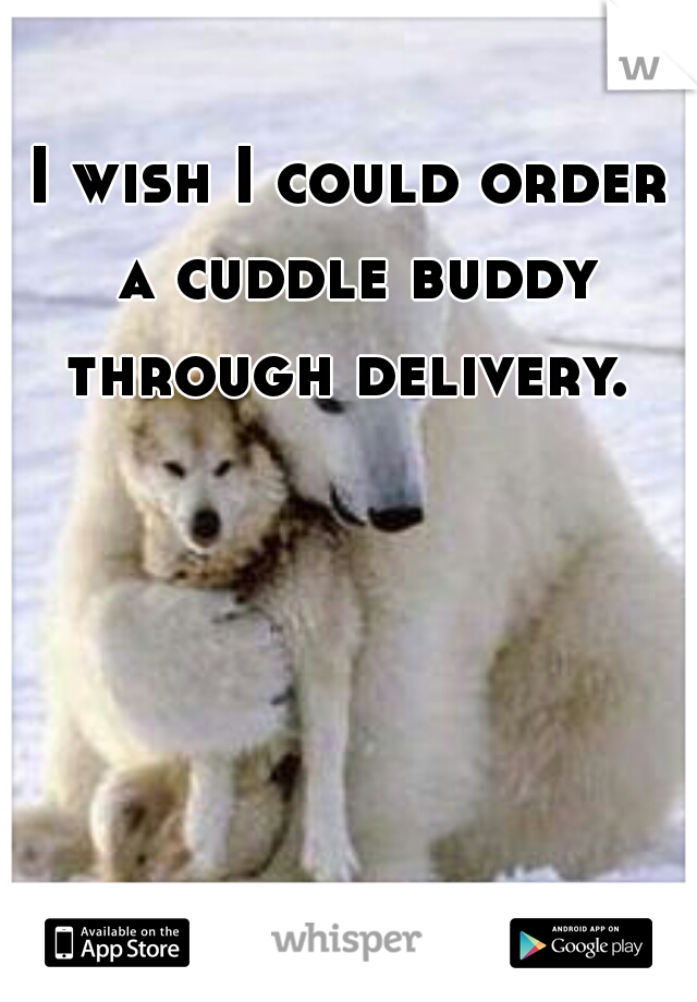 I wish I could order a cuddle buddy through delivery.