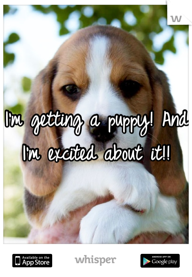 I'm getting a puppy! And I'm excited about it!!