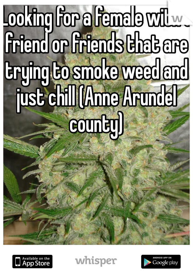 Looking for a female with a friend or friends that are trying to smoke weed and just chill (Anne Arundel county)
