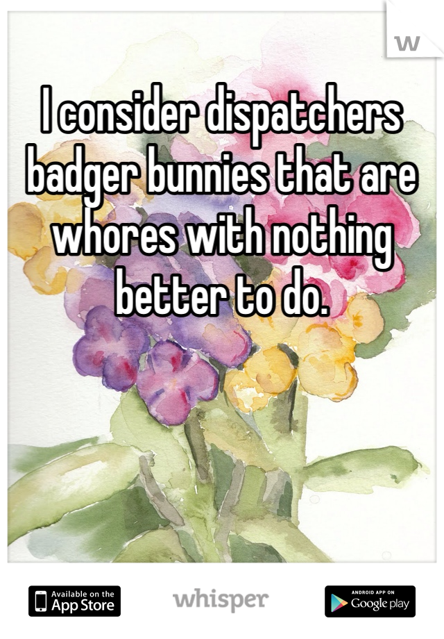 I consider dispatchers badger bunnies that are whores with nothing better to do.