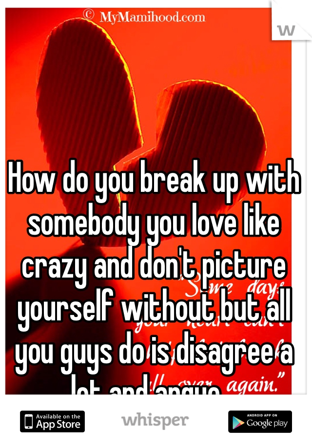 How do you break up with somebody you love like crazy and don't picture yourself without but all you guys do is disagree a lot and argue...
