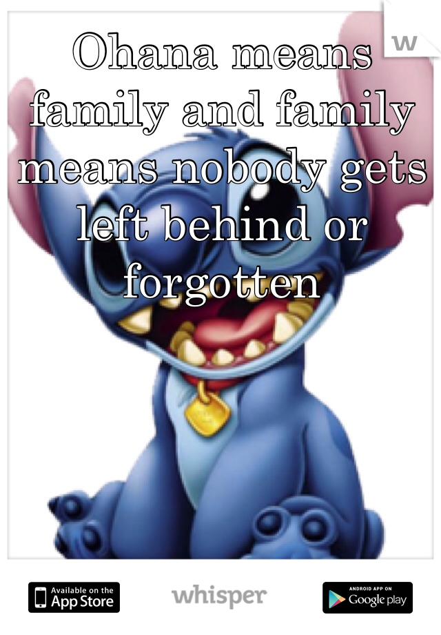 Ohana means family and family means nobody gets left behind or forgotten