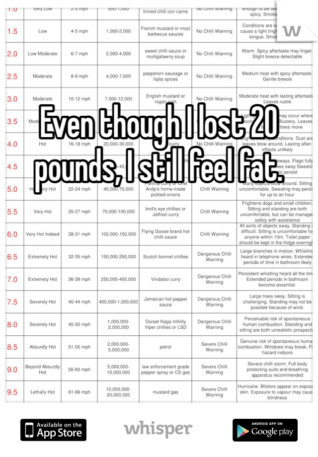 Even though I lost 20 pounds, I still feel fat.