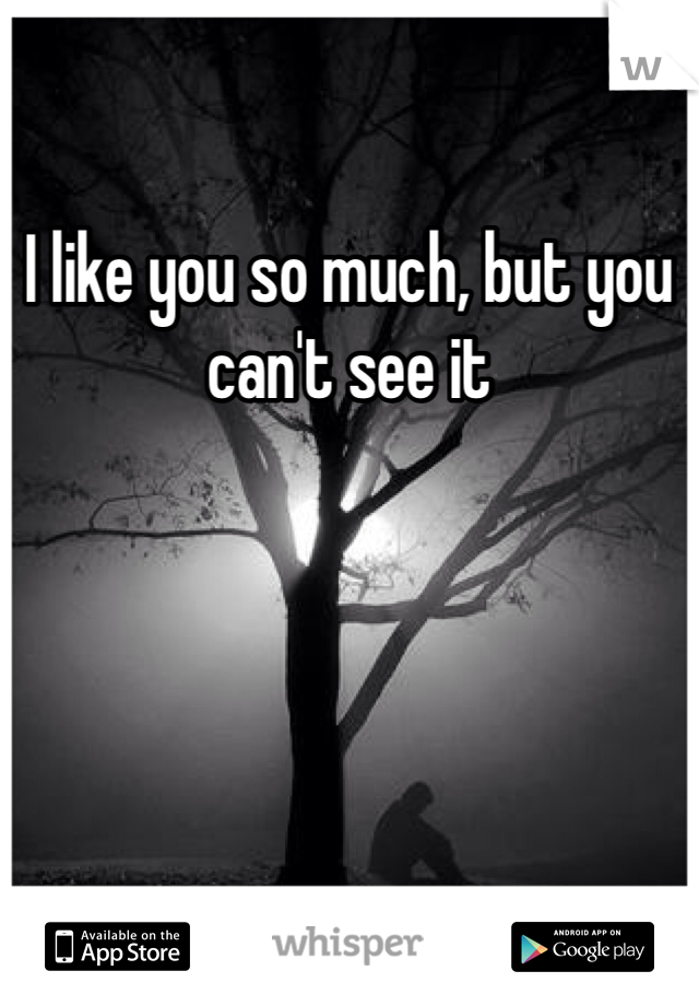 I like you so much, but you can't see it