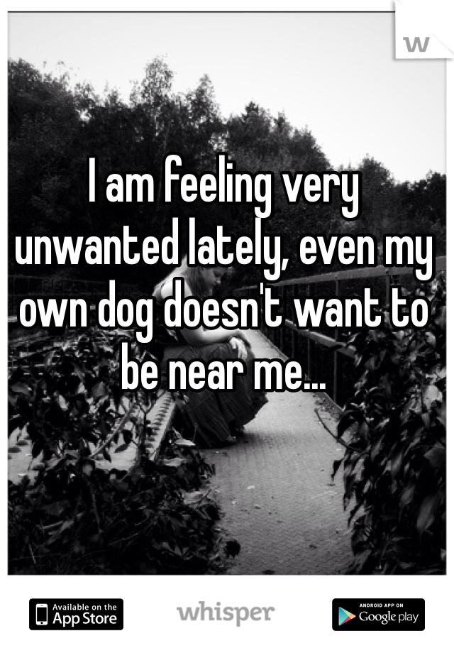I am feeling very unwanted lately, even my own dog doesn't want to be near me...