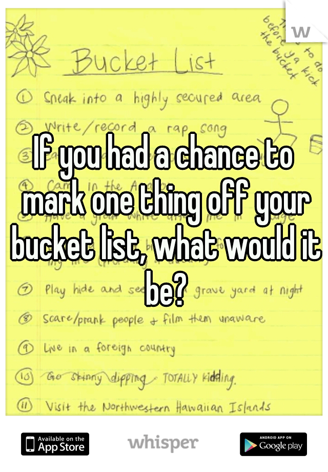 If you had a chance to mark one thing off your bucket list, what would it be?