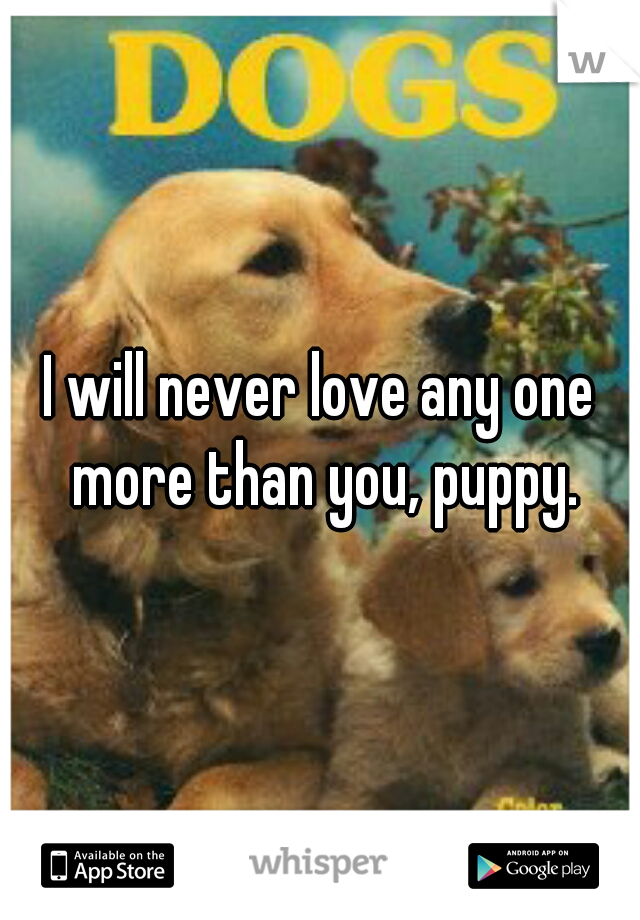 I will never love any one more than you, puppy.