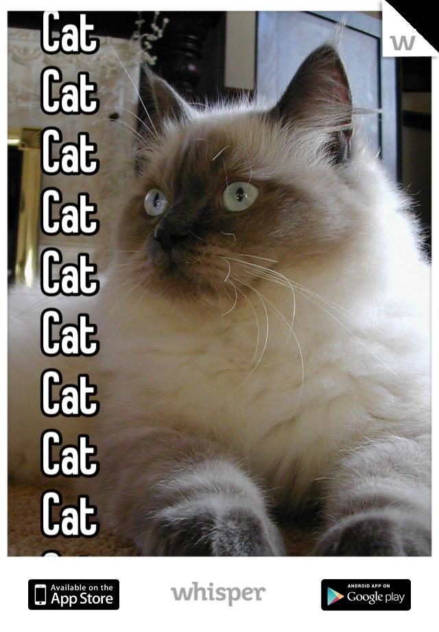 Cat Cat Cat Cat Cat Cat Cat Cat Cat Cat Cat Cat Cat Cat Cat Cat Cat Cat Cat Cat Cat Cat Cat Cat Cat Cat Cat Cat Cat Cat Cat Cat Cat Cat Cat Cat