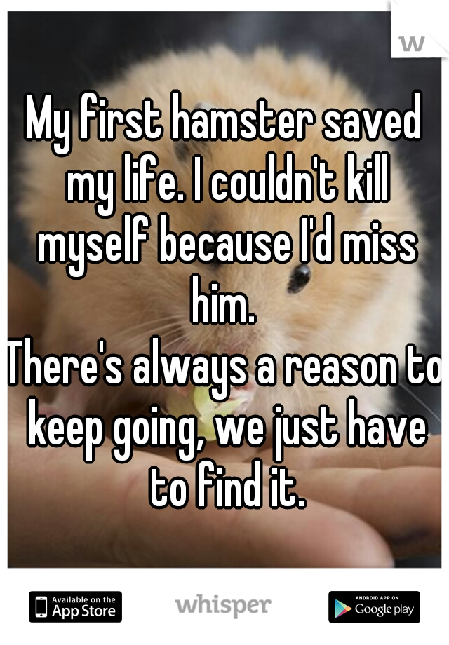 My first hamster saved my life. I couldn't kill myself because I'd miss him.   There's always a reason to keep going, we just have to find it.