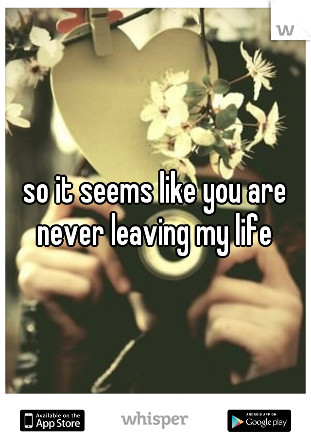 so it seems like you are never leaving my life