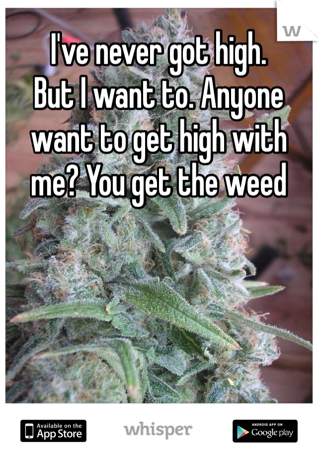 I've never got high.  But I want to. Anyone want to get high with me? You get the weed