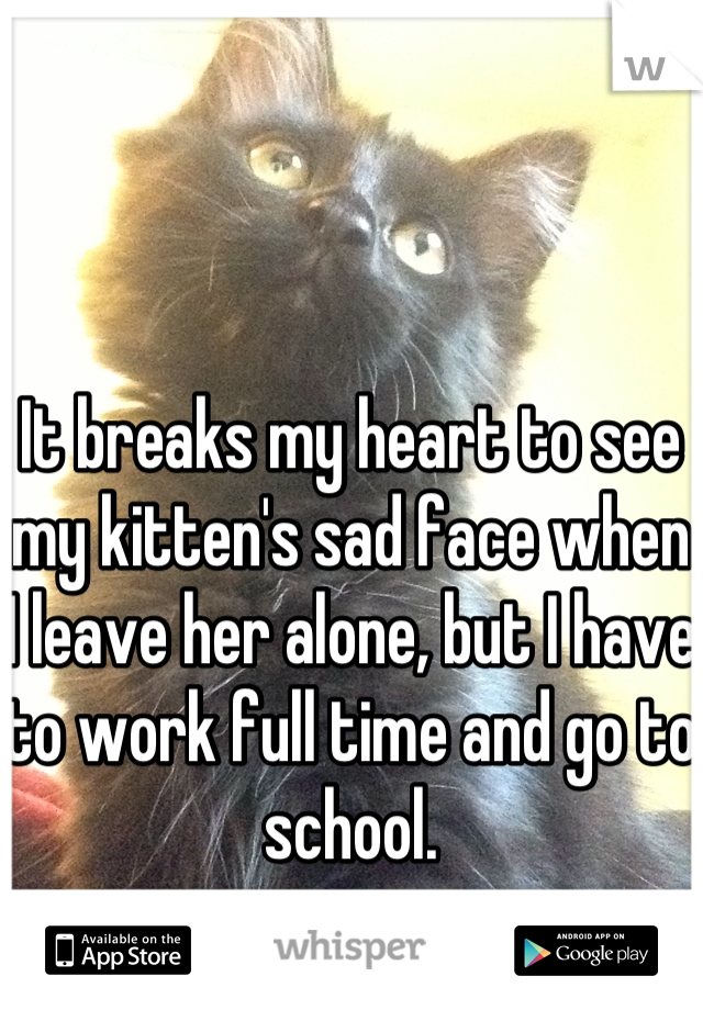 It breaks my heart to see my kitten's sad face when I leave her alone, but I have to work full time and go to school.
