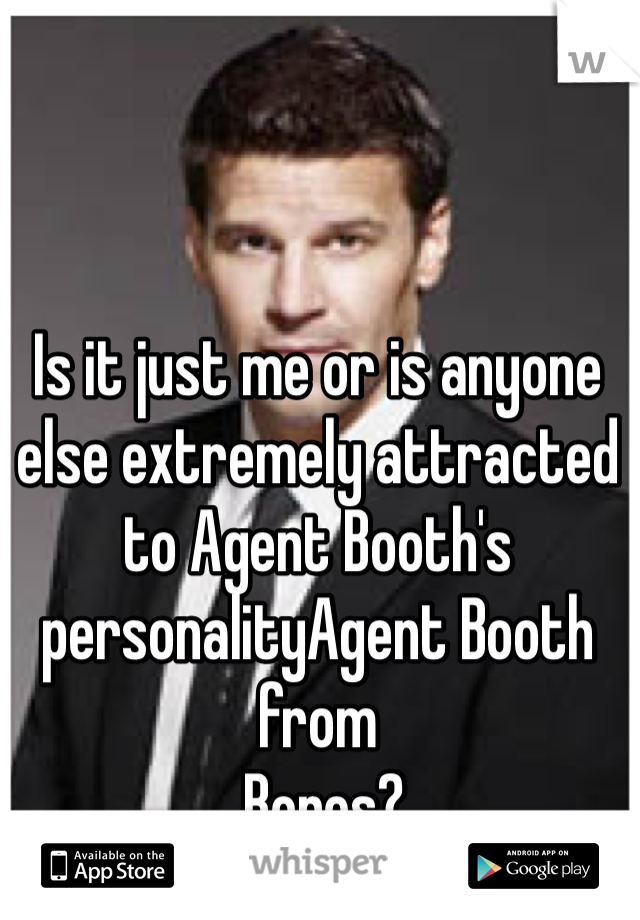 Is it just me or is anyone else extremely attracted to Agent Booth's personalityAgent Booth from  Bones?