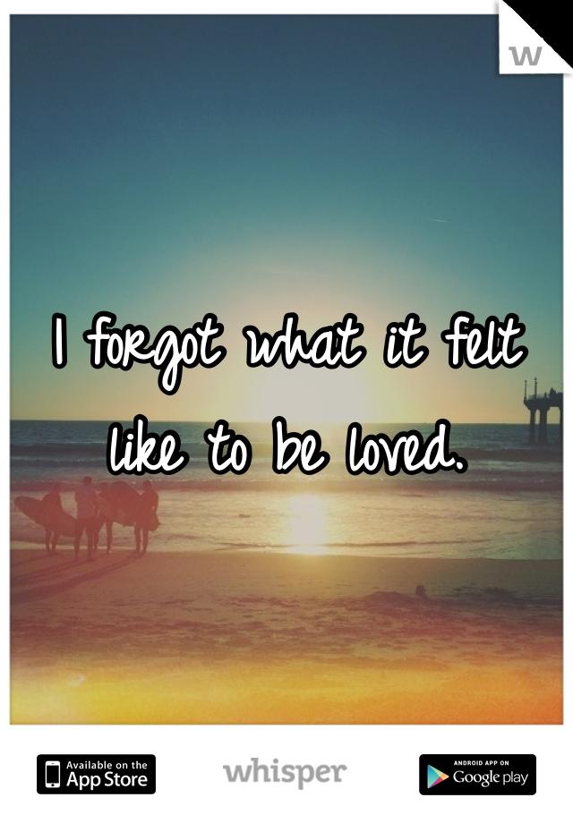 I forgot what it felt like to be loved.