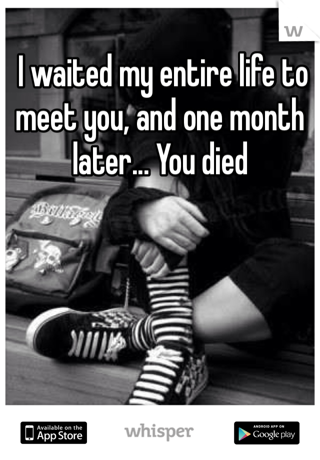 I waited my entire life to meet you, and one month later... You died