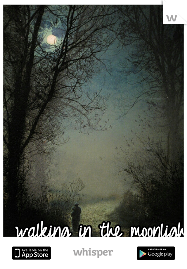 walking in the moonlight I am thinking of you