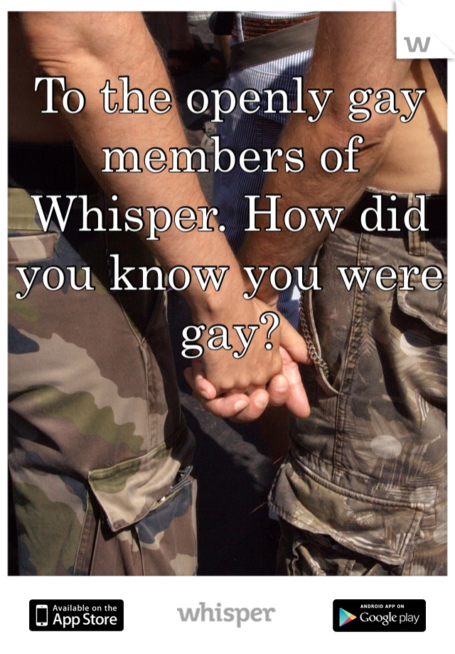 To the openly gay members of Whisper. How did you know you were gay?