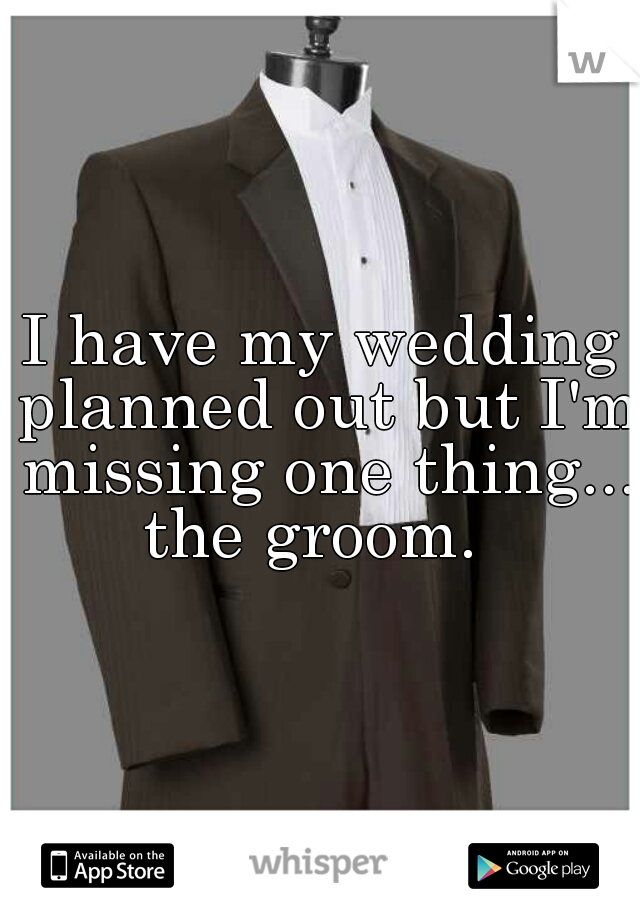 I have my wedding planned out but I'm missing one thing...   the groom.
