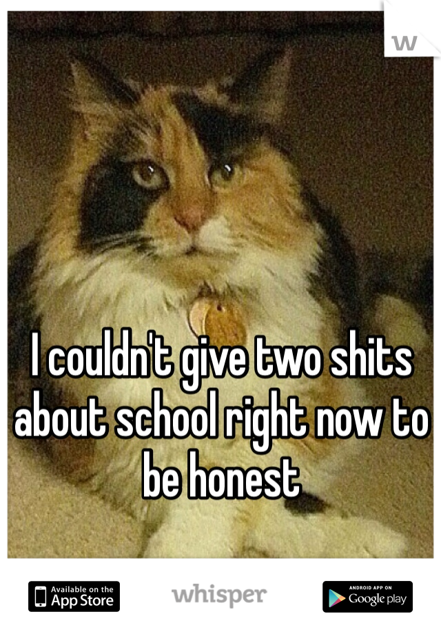 I couldn't give two shits about school right now to be honest