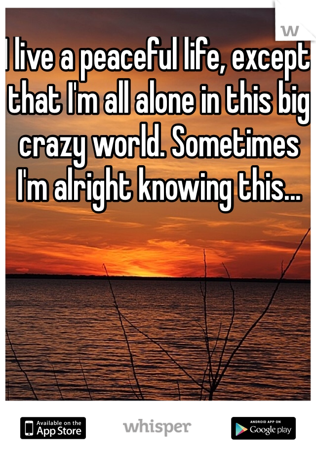I live a peaceful life, except that I'm all alone in this big crazy world. Sometimes I'm alright knowing this...