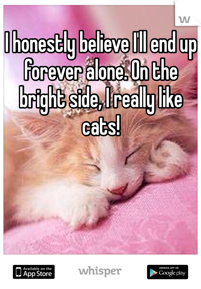 I honestly believe I'll end up forever alone. On the bright side, I really like cats!