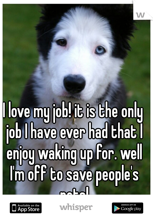 I love my job! it is the only job I have ever had that I enjoy waking up for. well I'm off to save people's pets!