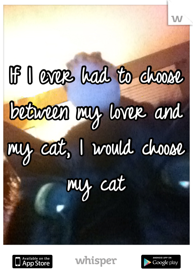 If I ever had to choose between my lover and my cat, I would choose my cat