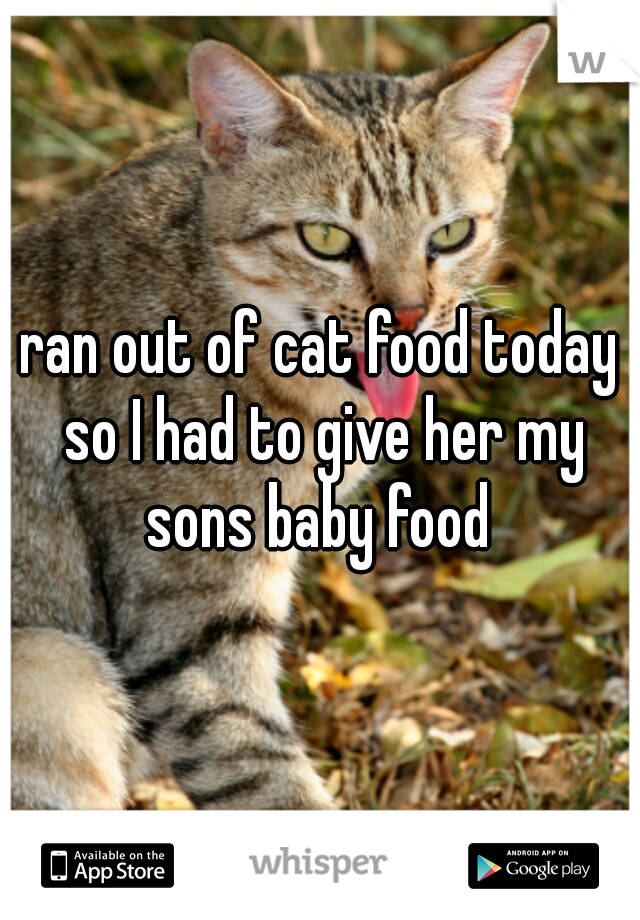 ran out of cat food today so I had to give her my sons baby food